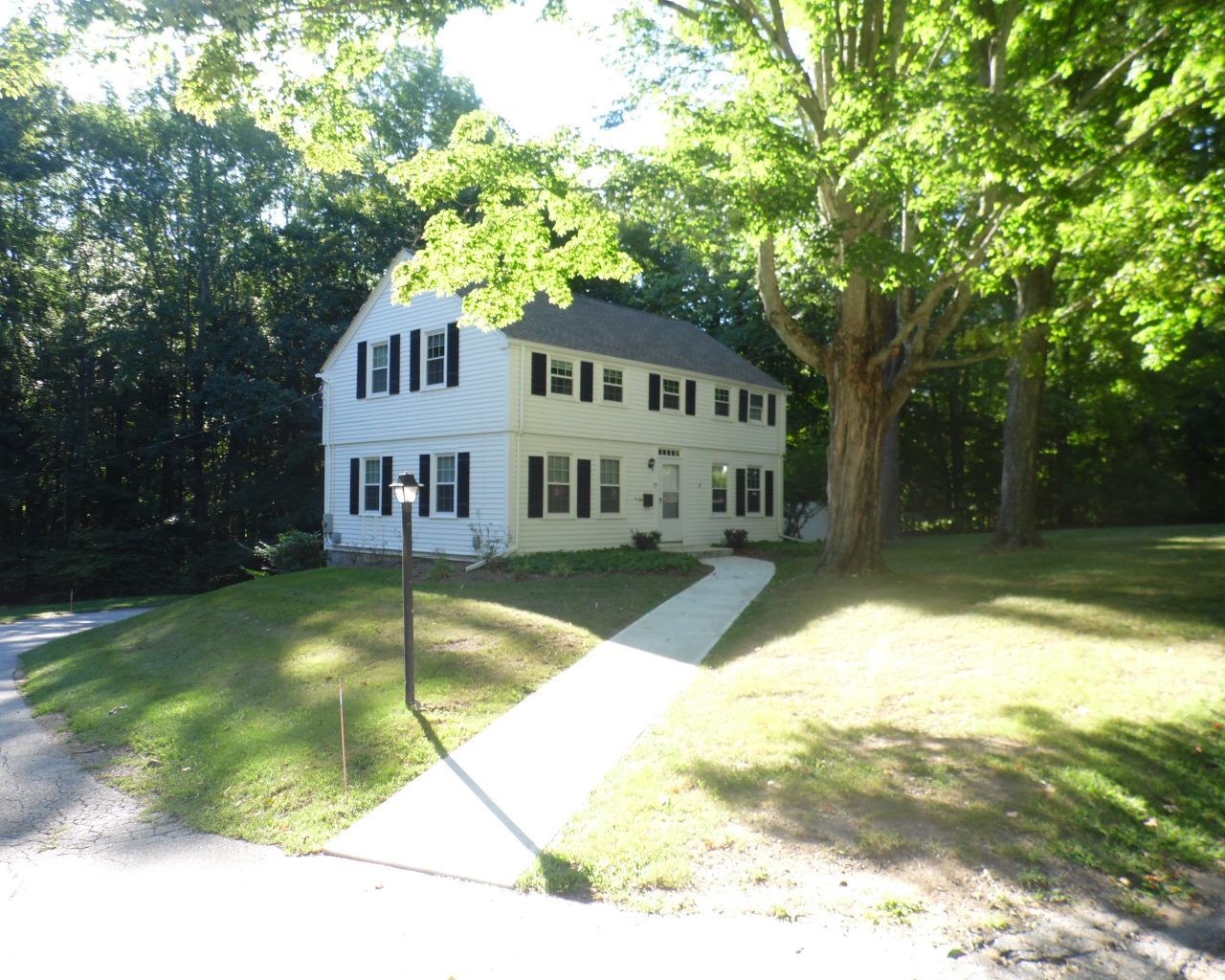 House 55 Side Elevation